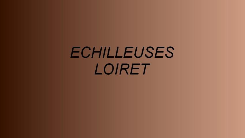 ECHILLEUSES