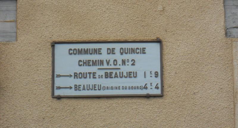 Quincie
